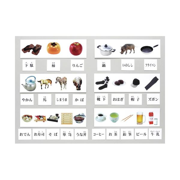 DLM 弁別組合せ学習カードセット KK1300 送料無料!