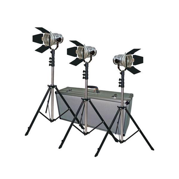 LPL スタジオロケーションライト トロピカルTL500キット3 L25733 送料無料!