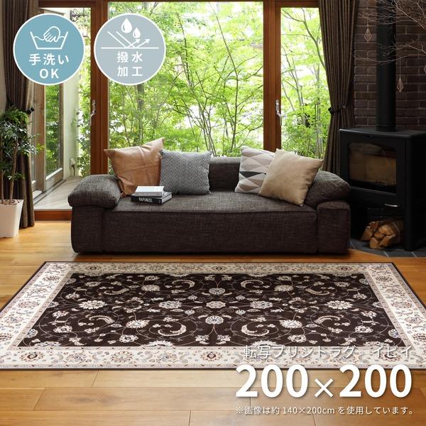 全店販売中 高級絨毯風プリントラグ 撥水加工付き 転写プリントラグ イビイ 送料込 代引不可 永遠の定番 約200×200cm