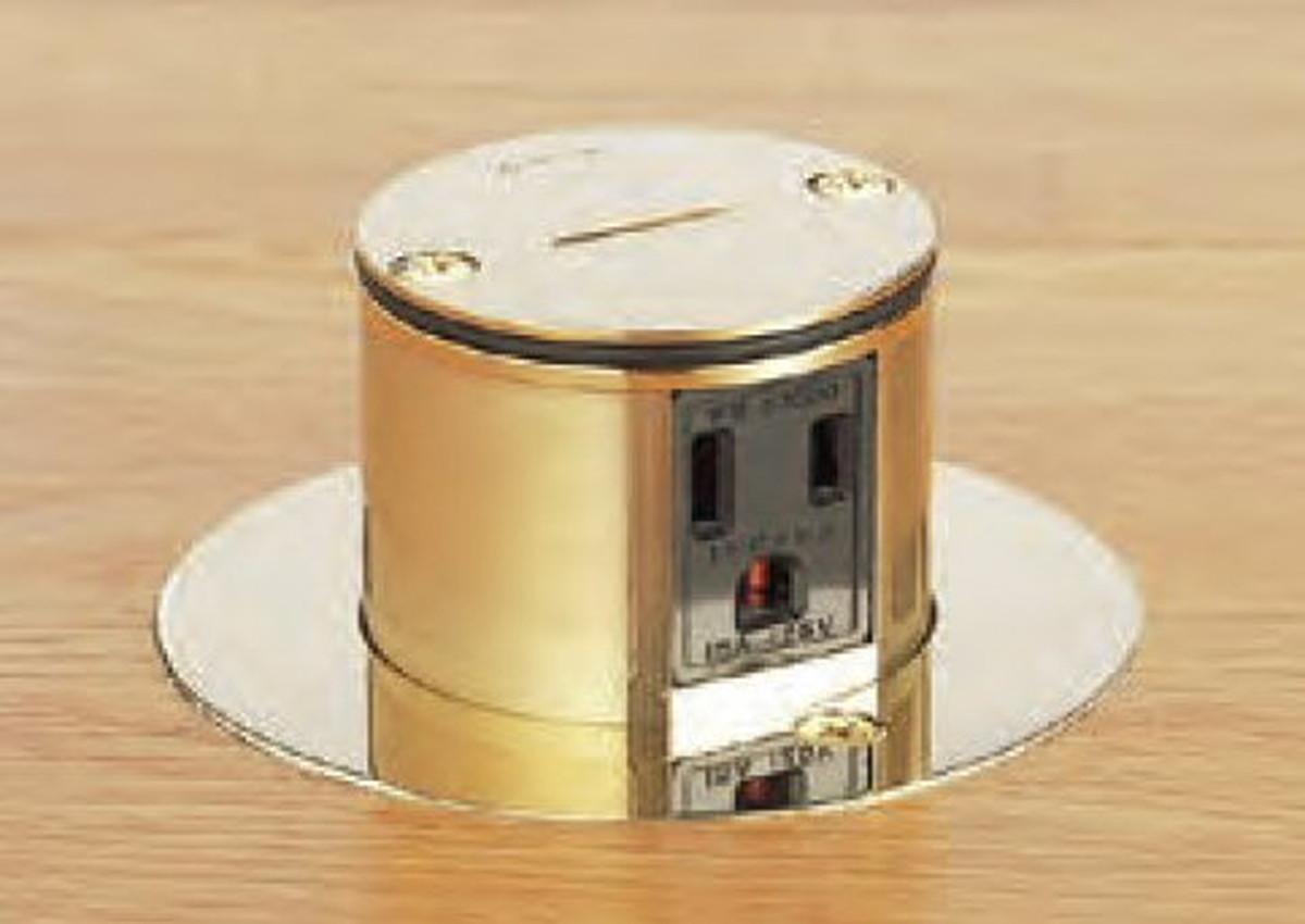 寺田電機 TFB50113R 上下動 P=66.7 ゴールド 接地2P15A125V×2 Rカット