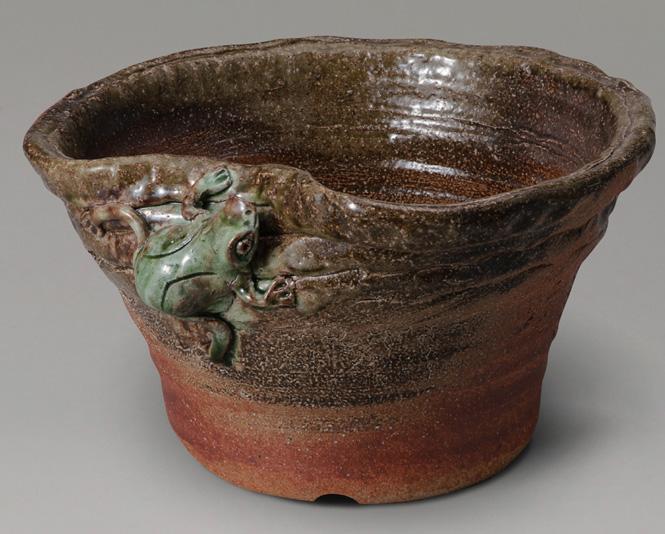 睡蓮鉢 メダカ鉢 ビードロ蛙 付めだか鉢 信楽焼 めだか鉢 水鉢 金魚鉢 ビオトープづくりに 水連鉢 すいれん鉢彩り屋