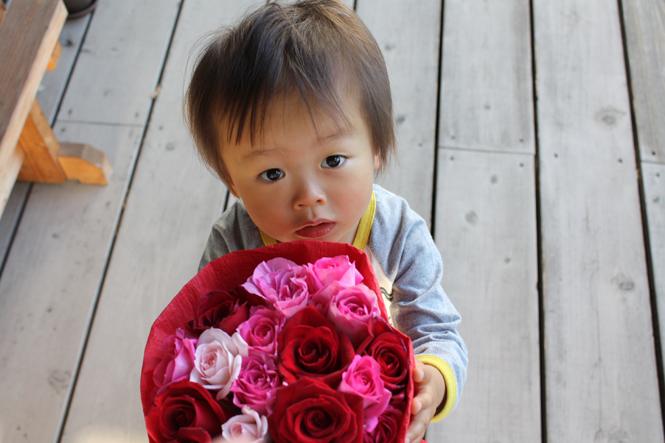 薔薇の花束 20本ギフト バラの花束をバラ園より産地直送でお届けします彩り屋