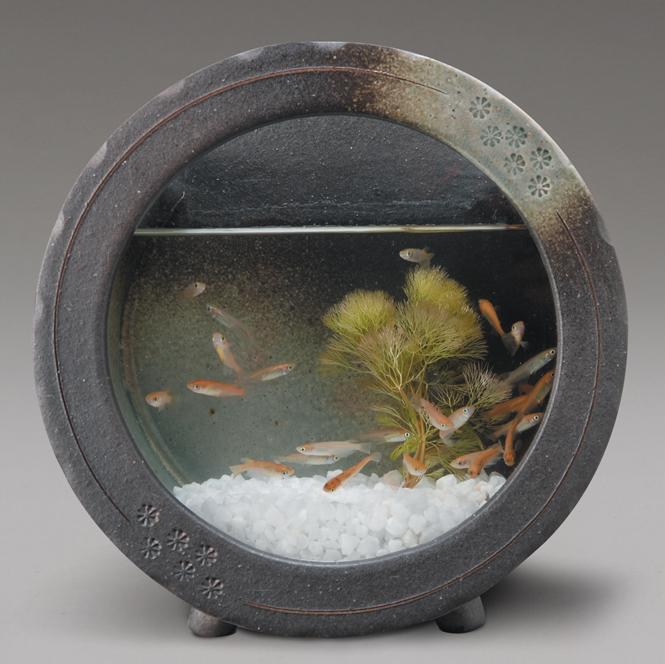 黒釉丸水槽信楽焼 金魚鉢 黒釉丸水槽水槽 陶器 置物 めだか鉢 水鉢 彩り屋