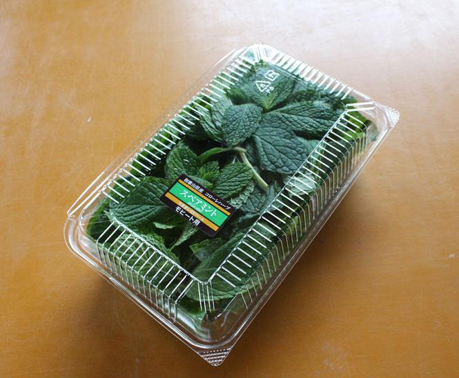 スペアミント 50g モヒート用 フレッシュハーブ 食用 和歌山県産葉が大きく匂いが濃くてモヒートに最適彩り屋_