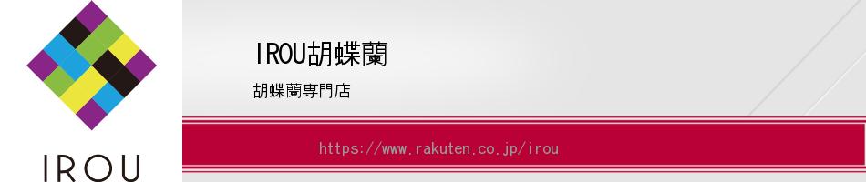 IROU胡蝶蘭:高品質胡蝶蘭専門店