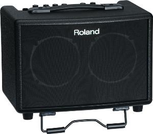 Roland / AC-33 【池袋店】