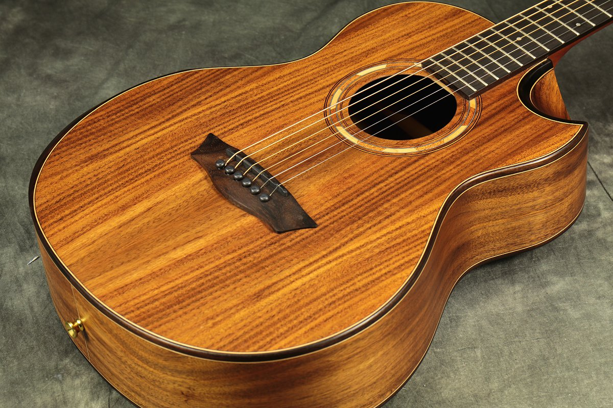 Washburn / WCGM55K Natural ワッシュバーン アコースティックギター アコギ 【Comfort Series】【新宿店】