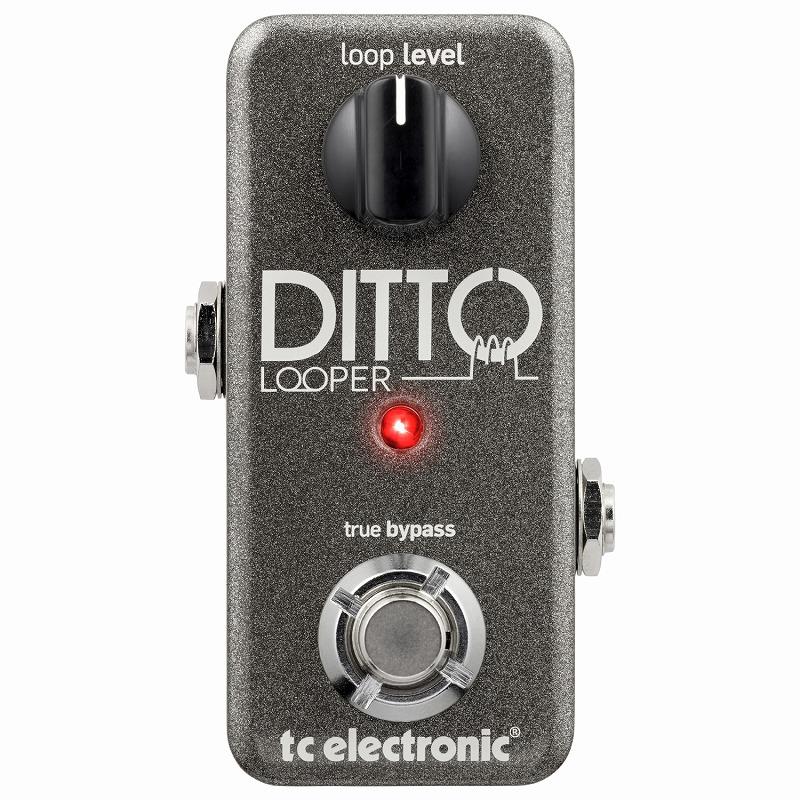 tc electronic / Ditto Looper [ルーパー]【渋谷店】