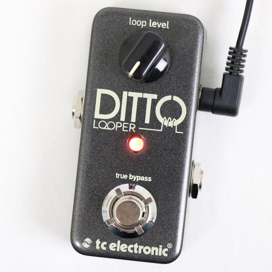 tc electronic / Ditto Looper 【ティーシーエレクトロニック】【エフェクター】【ルーパー】【横浜店】