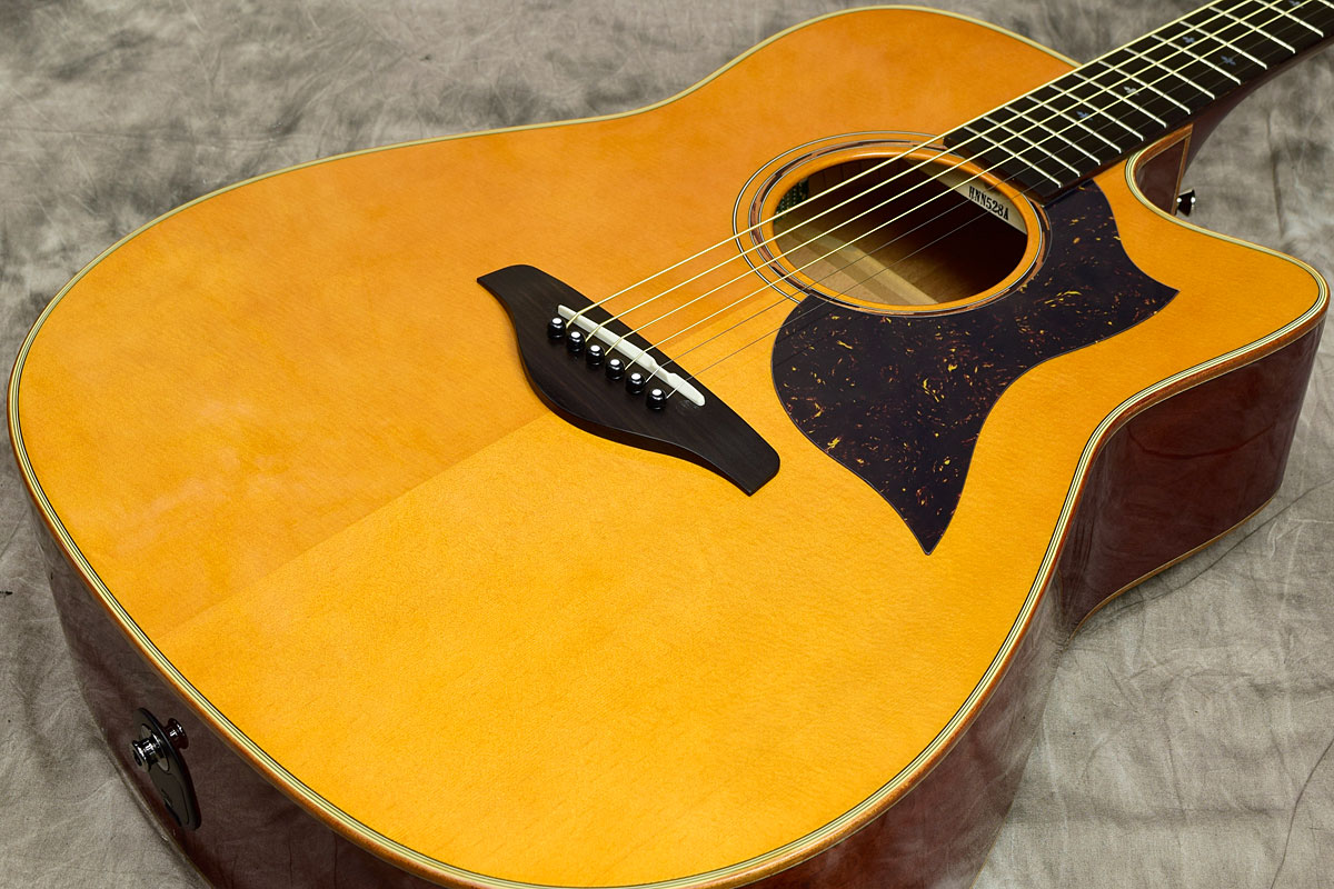 YAMAHA / A5M ARE Vintage Natural S/N:HNN528A【ヤマハ】【エレアコ】【新宿店】