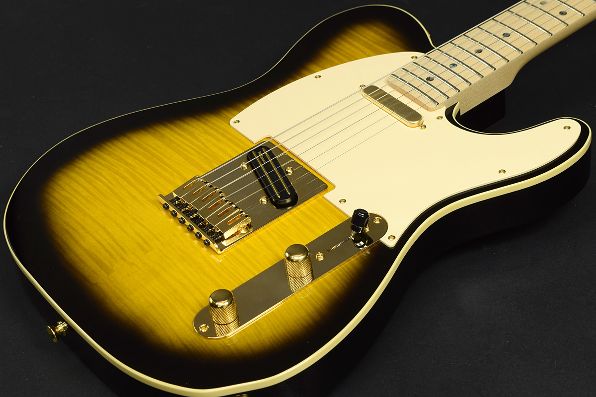 Fender / Japan Exclusive Ritchie Kotzen Telecaster Brown Sunburst S/N:JD16011160 【フェンダー】【テレキャスター】【新宿店】