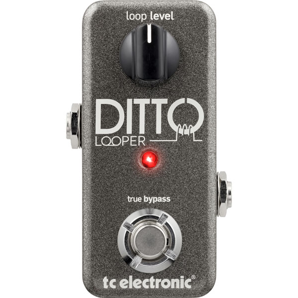 t.c.electronic / DITTO LOOPER 【超コンパクトで実用的なルーパーが登場!】