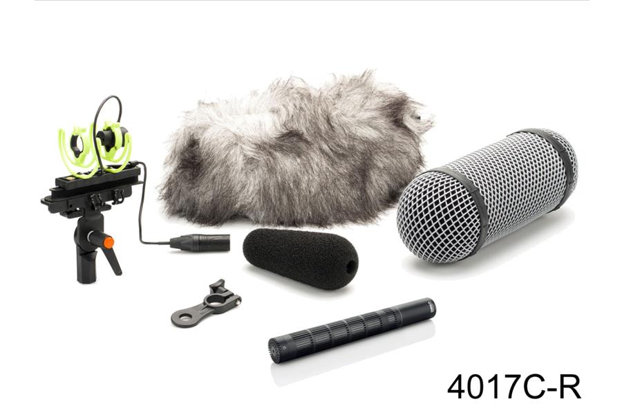 DPA Microphones ディーピーエーマイクロホンズ / 4017C-R d:dicate レコーディング・マイクス ショットガン・マイクロホン・アクセサリーパック【国内正規保証5年】【お取り寄せ商品】