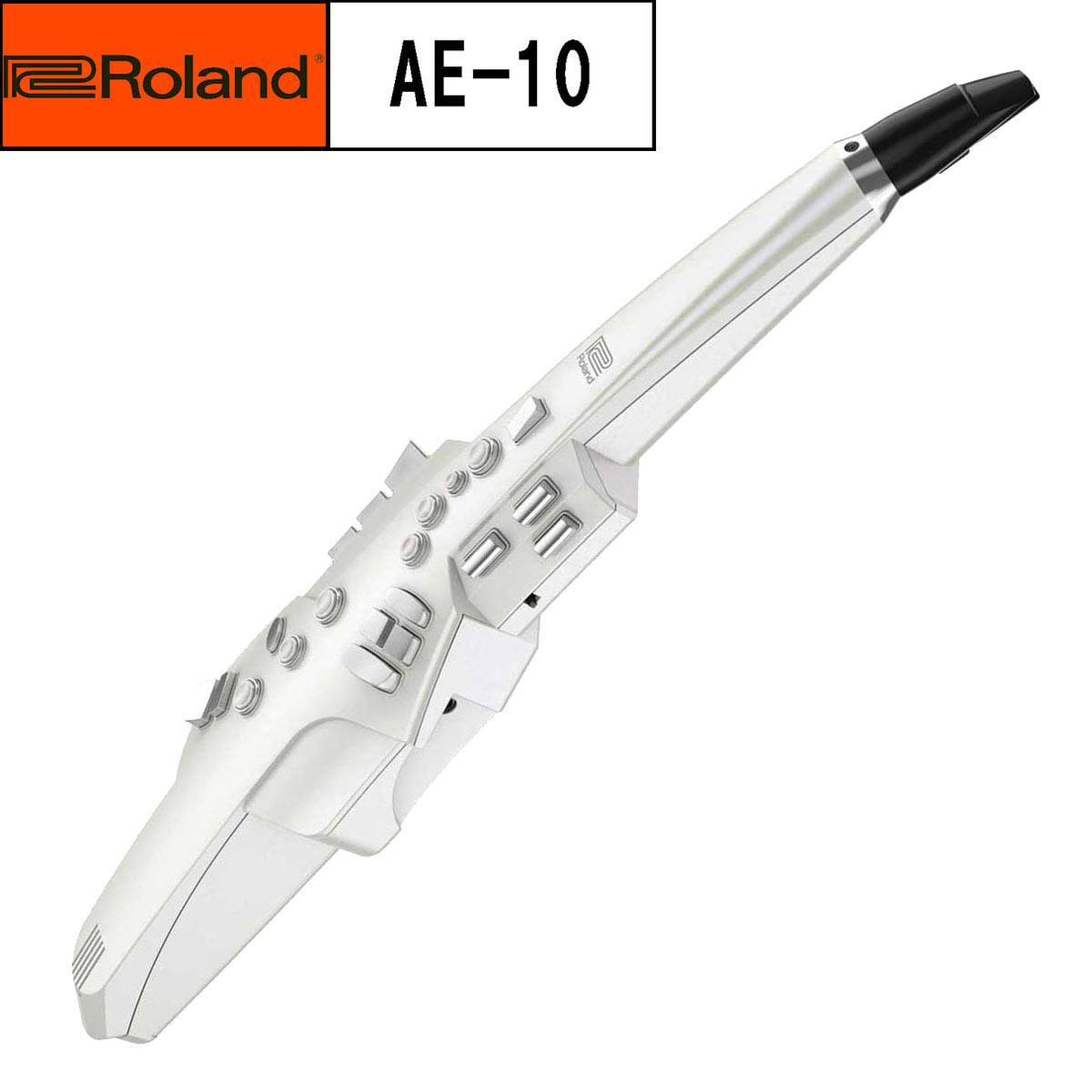 【在庫あり】Roland ローランド / Aerophone AE-10 エアロフォン【送料無料】