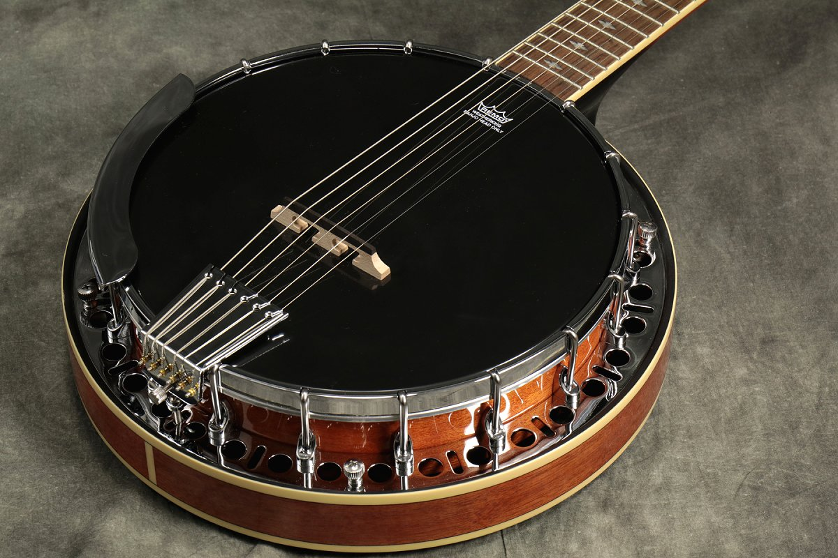 EPIPHONE / Stagebird 6-String Electric Banjo MA (Mahogany) エピフォン バンジョー