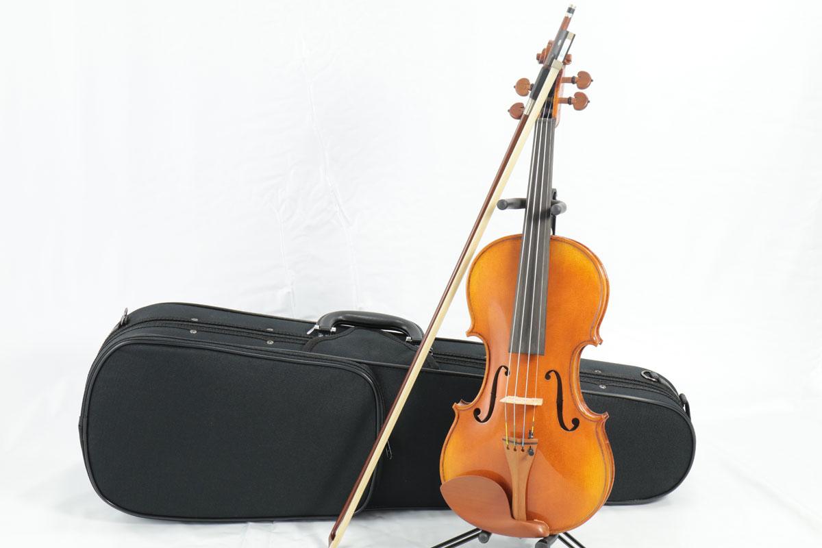 Carlo giordano / VS-2 バイオリンセット 1/2 【バイオリンアウトフィット】 Violin Set カルロジョルダーノ 入門 初心者 ヴァイオリン【お取り寄せ商品】
