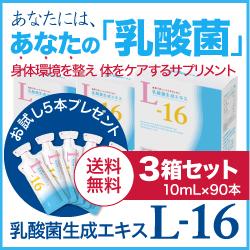 【送料無料】 乳酸菌生成エキスL-16 3箱セット (約3ヵ月分)【乳酸菌生成物質】【農薬不使用】【国内大豆使用】〈希釈タイプ〉【大人気】