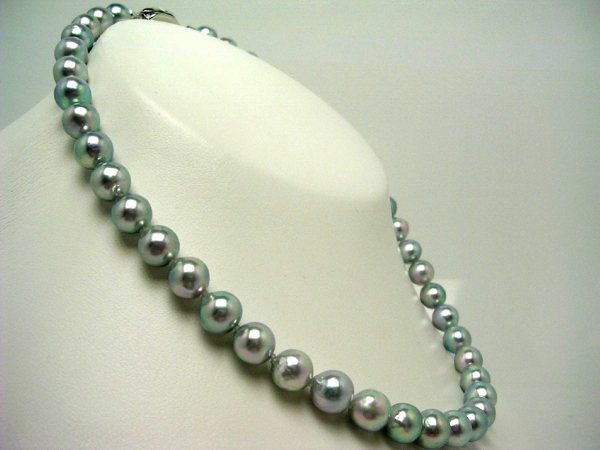 真珠 ネックレス パール アコヤ真珠 8.5-9.0mm シルバーブルー(ナチュラル) シルバー クラスップ 59813 イソワパール