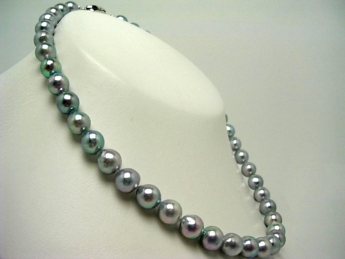 真珠 ネックレス パール アコヤ真珠 8.5-9.0mm シルバーブルー(ナチュラル) シルバー クラスップ 59814 イソワパール