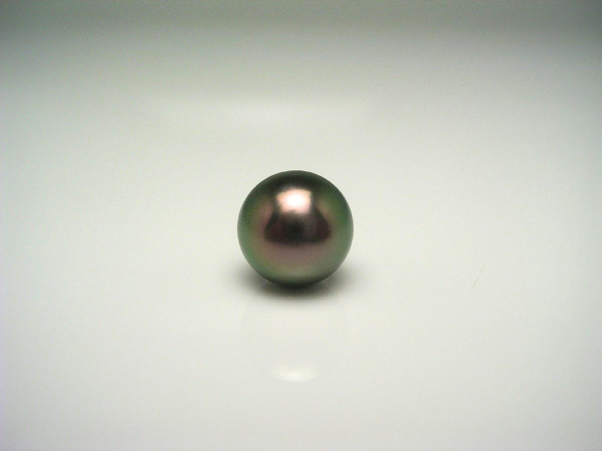 【10%OFF】真珠 ネクタイピン パール 黒蝶真珠 9.8mm ピーコックグリーン K18 イエローゴールド 針 62723 イソワパール