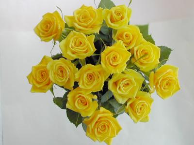アニバーサリーローズ 15本 薔薇 記念日 感謝 バラ花束 黄バラ15本 花束 本体