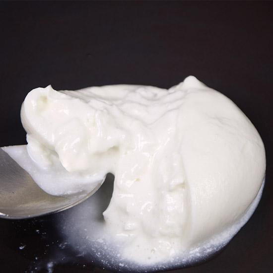 フレッシュ ブラッティーナ モッツァレラ イタリア 好評 チーズ フレッシュチーズ イタリア産 100g 今季も再入荷 冷凍 ジョイエラブラータ