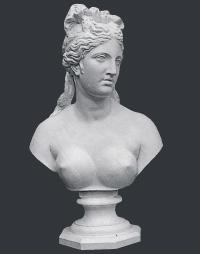 【メーカー直送】石膏像[岡石膏] ヴィナスカップァ胸像