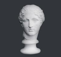 【メーカー直送】石膏像[岡石膏] パルテノン・ヴィナス首像