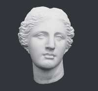 【メーカー直送】石膏像[岡石膏] ミロヴィナス半面