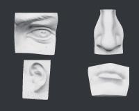 【メーカー直送】石膏像[岡石膏] 目・耳・鼻・口 4点組