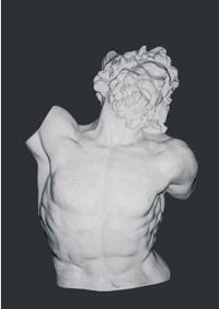 【メーカー直送】石膏像[岡石膏] ラオコン半身像