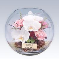 【ブーケボックス】フェアリー-Fairy- 送料無料Marathon10P02feb13