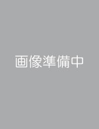 3トップスター ナイアガラドレープライト(ホワイト/ブルー)(クリスマス/クリスマス用品/クリスマスツリー/ツリー/パーティー/飾り/オーナメント/ライト/電飾/電球)