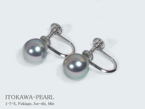 グレー系 あこや真珠イヤリング<7.6mm>ネジ式・K14WG E-4656【当店のクーポンを是非ご利用下さい】