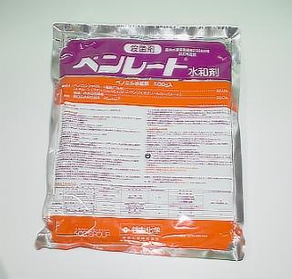 高品質 予防効果と治療効果を兼ね備えた薬剤 殺菌剤 ベンレート水和剤 全商品オープニング価格 500g