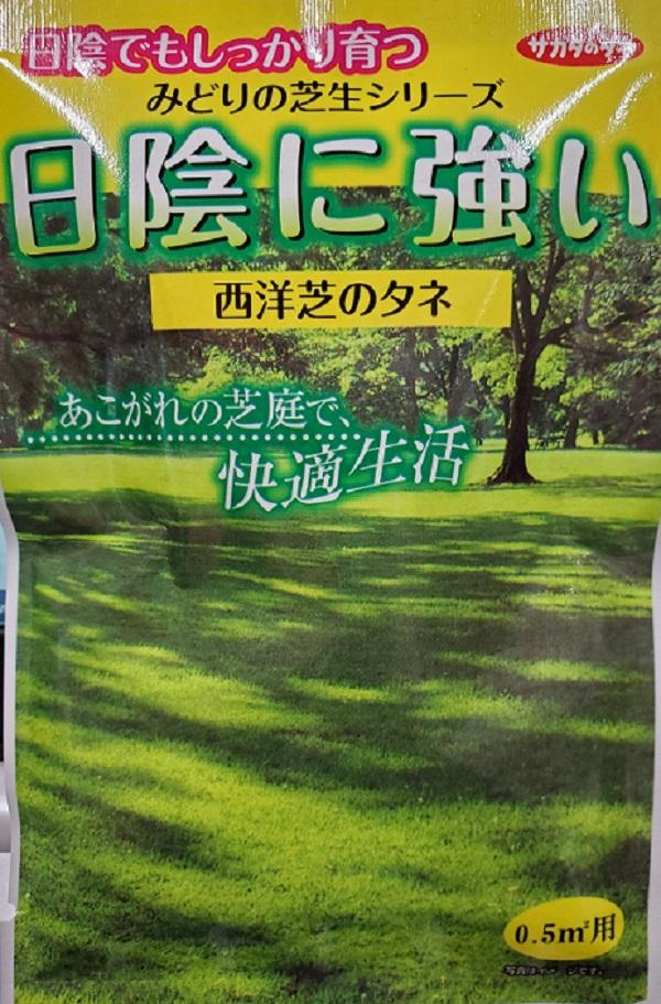 憧れの芝庭で快適生活 期間限定 種子 西洋芝日陰に強い西洋芝のタネ 芝草 サカタのタネ 最新アイテム