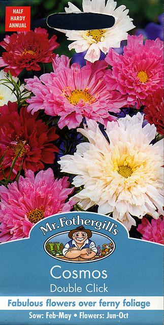 【輸入種子】Mr.Fothergill's SeedsCosmos Double Clickコスモス ダブル・クリックミスター・フォザーギルズシード