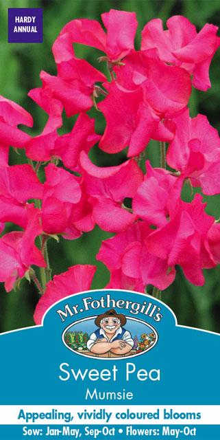 素晴らしい芳香性のマジェンダ スイートピー 輸入種子 Mr.Fothergill's Seeds Sweet プレゼント お洒落 Pea ミスター ピー フォザーギルズシード Mumsie マムジー スイート
