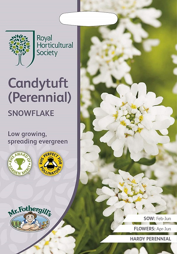 美しい純白のイベリス 輸入種子 Mr.Fothergill's Seeds Royal Horticultural Society Candytuft フォザーギルズシード SNOWFLAKE ミスター 日本 RHS ペレニアル スノーフレーク キャンディタフト Perennial 新商品