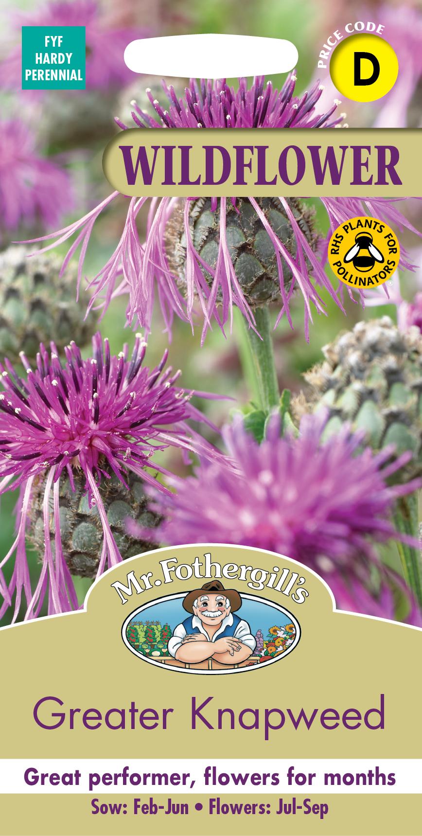 【輸入種子】Mr.Fothergill's SeedsWILDFLOWER GARDEN Greater Knapweed =Centaurea scabiosaワイルドフラワー・ガーデン グレイター・ナップウィード(ヤグルマギク)ミスター・フォザーギルズシード