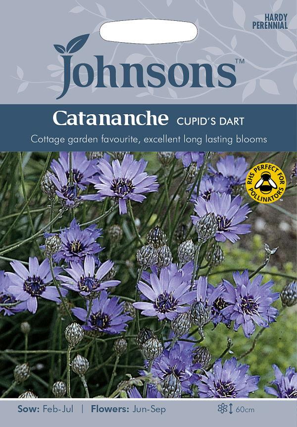 切り花やドライフラワーに向く涼しげな花! 【輸入種子】Johnsons Seeds Catananche caerulea Cupid's Dart カタナンケ・カエルーレラ キューピッド・ダート ジョンソンズシード