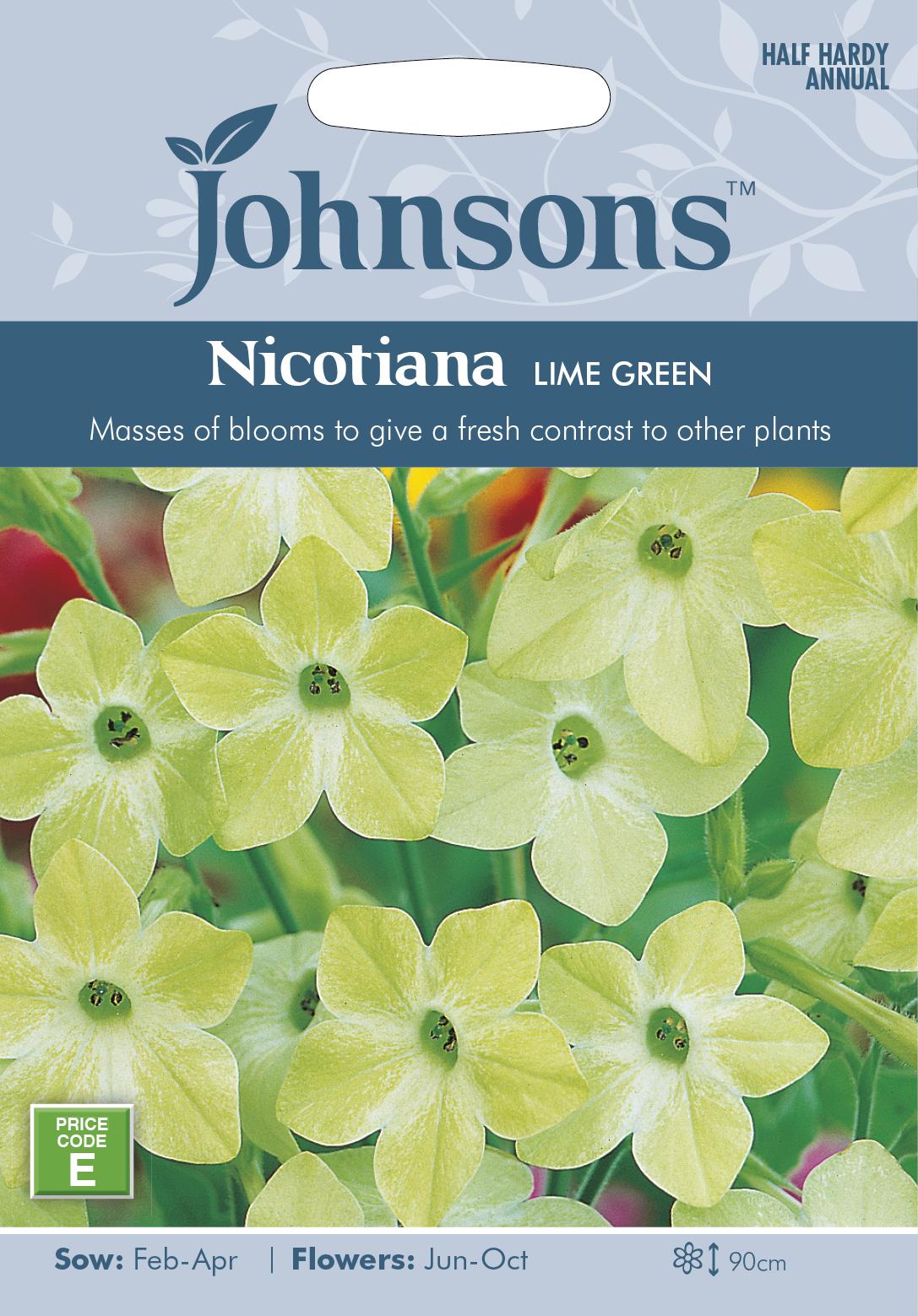 背が高く美しい花を咲かせます 輸入種子 Johnsons Seeds Nicotiana Lime ハナタバコ ジョンソンズシード 秀逸 グリーン Green 日本正規代理店品 ライム ニコチアナ