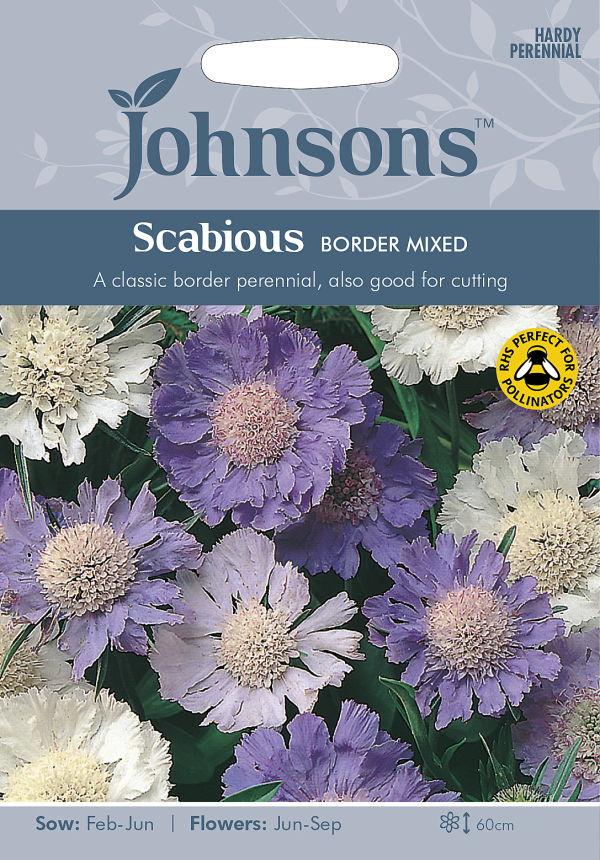 上品な花色のスカビオサ 輸入種子 Johnsons Seeds Scabious Border ボーダー 出色 Mixed スカビオサ ジョンソンズシード テレビで話題 ミックス