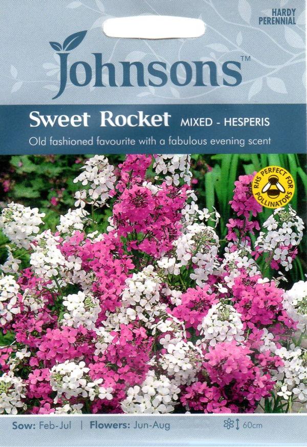 良い香りを放つハーブガーデンの必須アイテム 輸入種子 Johnsons Seeds Sweet Rocket Mixed - ロケット Hesperis セール 登場大人気アイテム 登場から人気沸騰 ハナダイコン ジョンソンズシード ミックス ヘスペリス スイート