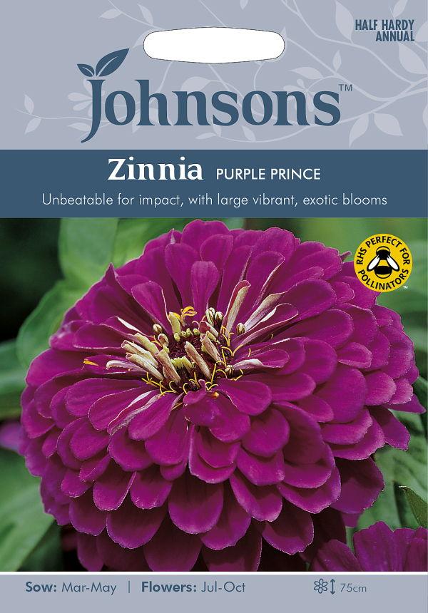 インパクトのあるエキゾチックなパープルフラワー 輸入種子 Johnsons Seeds Zinnia Purple 出群 プリンス 新品未使用正規品 Prince ジニア パープル ジョンソンズシード 百日草