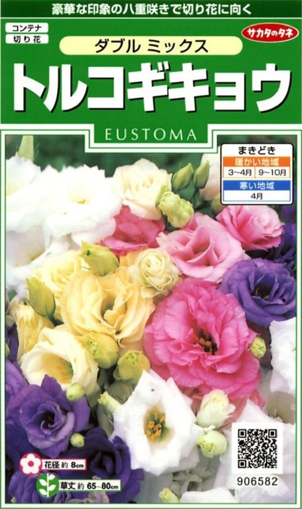 お得 豪華な八重咲きユーストマ バラエティーに富んだ花色 種子 トルコギキョウ ダブルミックス 国産品 ユーストマ サカタのタネ