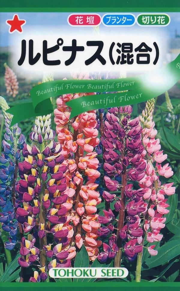 のぼりふじとも呼ばれる寒さに強い花 種子 ルピナス 混合 トーホクのタネ 40%OFFの激安セール 半額