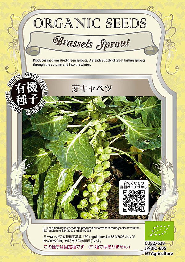 食味に優れた芽キャベツ 有機種子 グリーンフィールドプロジェクトのタネ 芽キャベツ 超人気 直送商品 専門店