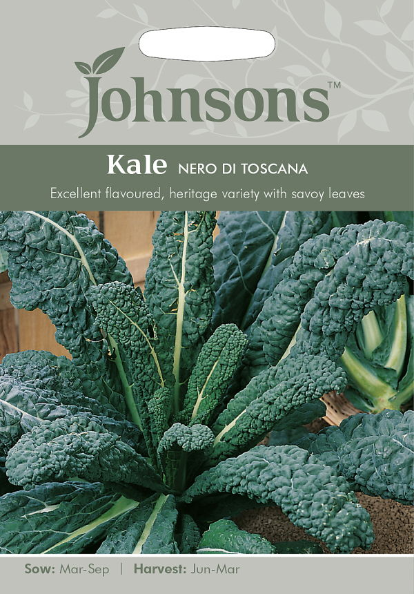 ベビー リーフとしても利用できるケール 輸入種子 即日出荷 Johnsons Seeds Kale Nero ケール ※アウトレット品 トスカーナ デ ジョンソンズシード ネロ di Toscana
