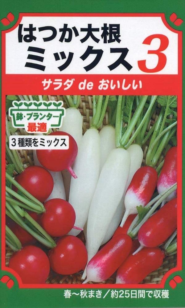 室内のプランターで簡単に栽培できる 種子 サラダ de トーホクのタネ はつか大根ミックス3 おいしい 販売期間 大規模セール 限定のお得なタイムセール